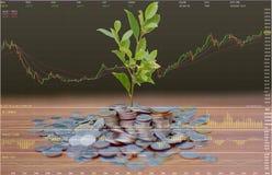 Economia do investimento fotos de stock royalty free