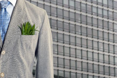 Economia verde Fotografia Stock Libera da Diritti
