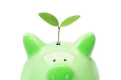 Economia verde fotografia de stock royalty free