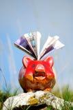 Economias e banco piggy Fotografia de Stock
