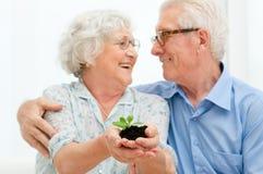 Economias e investements da aposentadoria Imagens de Stock Royalty Free