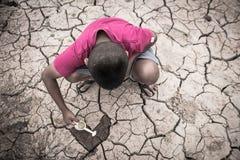 Economias que do menino pouca árvore da planta verde em rachado seca fotos de stock