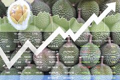 Economic financial stock index growth on Asian fruits. Economic financial stock index growth on Asian fruits  export market background shown chart and graph Stock Photo