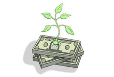 Economic Growth. Plant emerging from a pile of dollar bills. Symbol for green economic growth Royalty Free Stock Photos