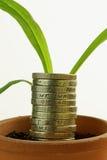 Economic Growth Royalty Free Stock Photos