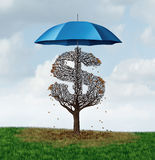 Economic Protectionism Policy. And financial closed trade restrictions as a tree shaped as a money dollar sign losing leaves due to a security umbrella blocking Royalty Free Stock Image