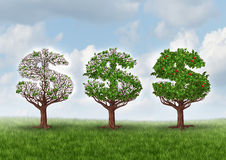 Economic Recovery. And growing wealth business metaphor as a group of trees shaped as a dollar sign gradually growing leaves and bearing fruit as a symbol of Stock Photo