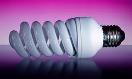 Economical bulb. Studio photo of economical lightbulb Royalty Free Stock Photography