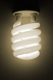 Economical light bulb. Close up of spiral light bulb on brown background Stock Image