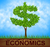 Economics Tree Indicates American Dollars And Branch Royalty Free Stock Image