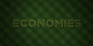 ECONOMIES - fresh Grass letters with flowers and dandelions - 3D rendered royalty free stock image Stock Photo