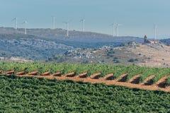 Economische middelen op een plattelandsgebied in het noorden van de provincie van Zamora in Spanje, als voorbeeld van de bestrijd stock foto's