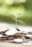 Economy and finance Stock Images