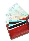 Economy finance. Wallet with polish banknotes cards isolated Stock Photography