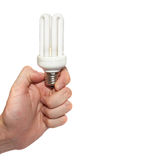 Economy lamp in a hand Royalty Free Stock Images