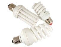 The Economy lamp. Economy lamps isolated on white background Stock Image