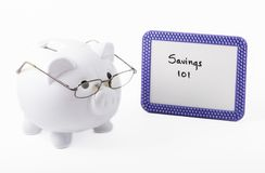 Economy professor: Piggy bank teaching how to save money Royalty Free Stock Photography
