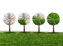 Economy Prosperity. And economic success financial concept as a group of green trees shaped as growing finance pie chart as a metaphor for gradual gains in Royalty Free Stock Image