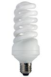 Economy Saving cfl Lamp Light Bulb Isolated Stock Image