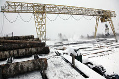 Economy 2014 timber business in winter stock images