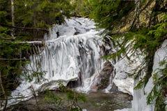 Ecopath - каньон водопадов Стоковое Изображение RF