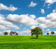 EcoRegion. Beautiful summer landscape with house and trees on green meadow royalty free stock image