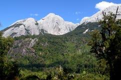 Ecoregion van de gematigde regenwouden van Valdivian in zuidelijk Chili Chileens Patagonië stock fotografie