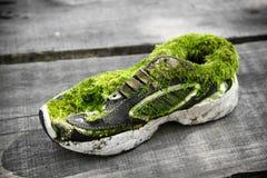 Ecoschoen - sparen het milieu Royalty-vrije Stock Afbeeldingen