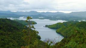 Ecossistema com a floresta do verde do lago na corrente de montanha Foto de Stock