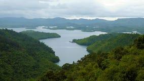 Ecossistema com a floresta do verde do lago na corrente de montanha Foto de Stock Royalty Free