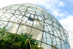 Ecosystem. Spheric structure made of glass and iron with plants inside stock photography