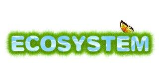 Ecosystem Stock Photo
