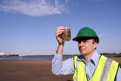 Ecosystem balance. An environmental engineer on the mudflats examining a plant sample with a ship docked behind him, showing the estuary and beautiful blue sky stock image