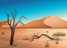 Ecosystem Desert stock illustration