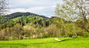 Ecosystem, Nature Reserve, Vegetation, Grassland royalty free stock photo