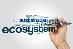 Ecosystem word cloud concept on grey background.  Royalty Free Stock Image