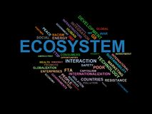 ECOSYSTEM - word cloud wordcloud - terms from the globalization, economy and policy environment. Wordcloud with series of terms from the globalization, economy Royalty Free Stock Photos