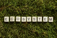 Ecosystem written with wooden letters cubed shape on the green grass. Increasing people`s awareness of environmental threats. Community of living organisms in stock photos