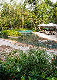 Ecotourism resort swimming pool landscaping Stock Images