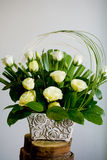 Ecru Roses Royalty Free Stock Images