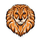 Ector illustration of a lion's head Royalty Free Stock Image