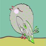 Ectorvogel die zingt Stock Foto