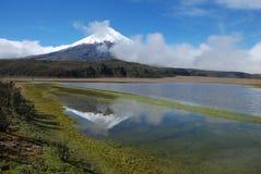 Ecuador 2008 - Cotopaxi-mirror. Ecuador 2008 - Cotopaxi - panorama, lagoon mirror Royalty Free Stock Images