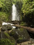 Ecuador, waterfall in the jungle stock image