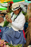 Ecuador, Ethnic latin woman Stock Photo