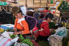 Ecuador, Ethnic latin woman Stock Images