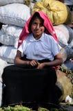Ecuador, Ethnic latin woman Stock Photography