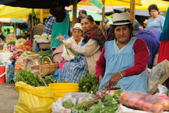 Ecuador, Etnische Latijnse vrouw Royalty-vrije Stock Foto's