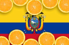 Ecuador flag in citrus fruit slices horizontal frame. Ecuador flag in horizontal frame of orange citrus fruit slices. Concept of growing as well as import and royalty free illustration