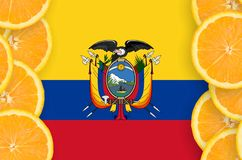 Ecuador flag in citrus fruit slices vertical frame. Ecuador flag in vertical frame of orange citrus fruit slices. Concept of growing as well as import and export royalty free stock photo